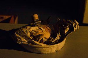 Marionnettes Amarante Jackou le hibou